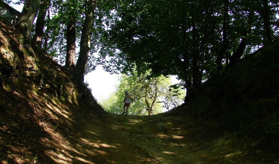 Droga prowadząca na zamek