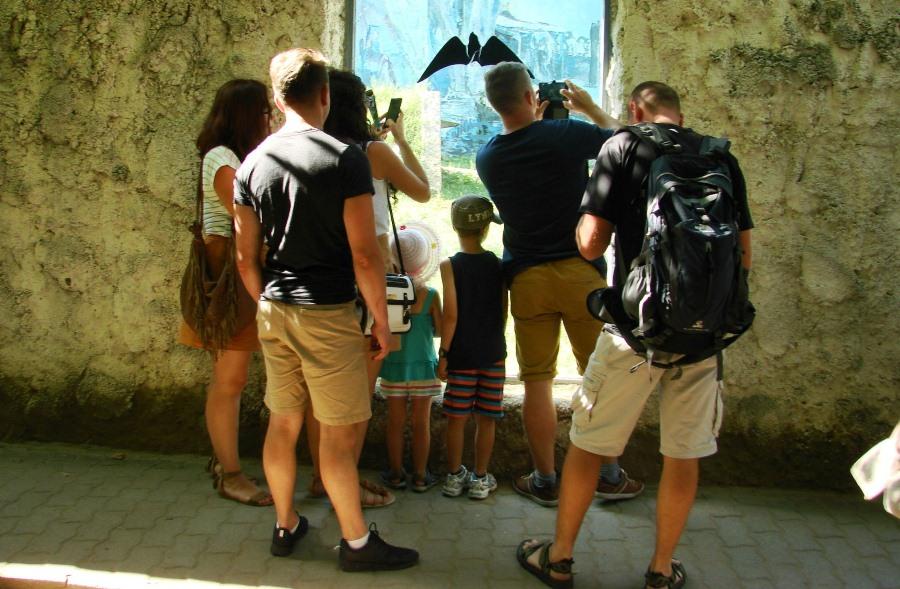 Rodzinna wycieczka do zoo