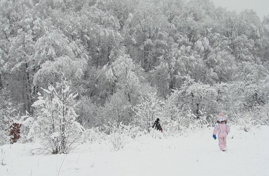 Zima w naszej miejscowości