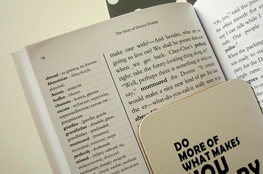 Wydawnictwo (ze słownikiem)