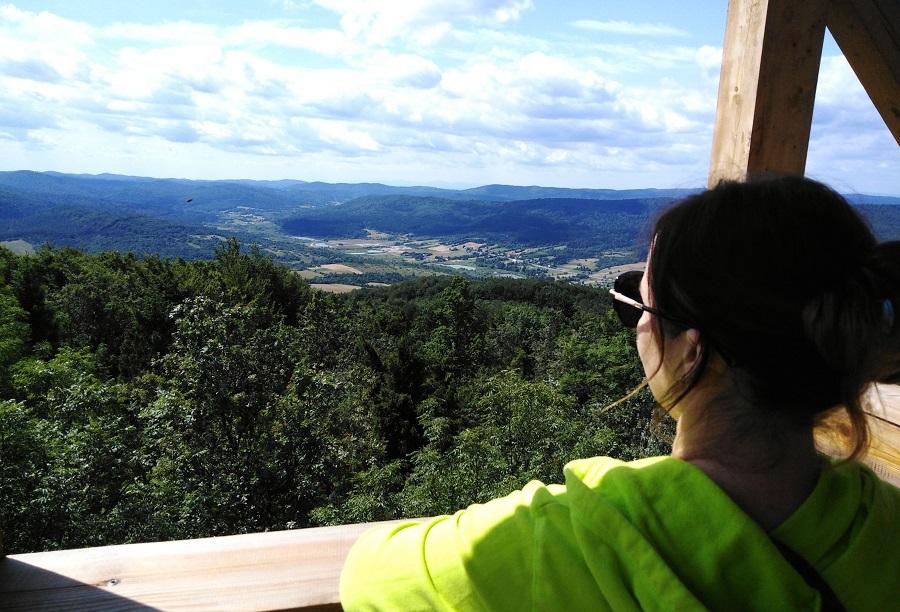 Widok z wieży na górze Cergowej